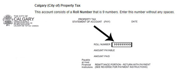 Property tax statement of account showing roll number