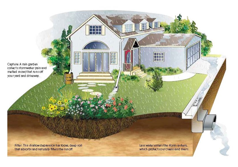 Infographic Example of a Rain Garden for a Residential Home